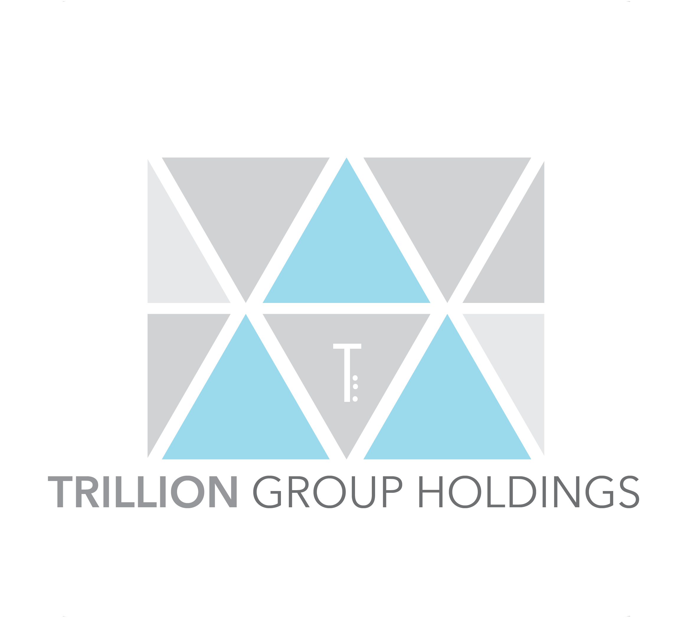 Trillion Group Holdings Pte Ltd