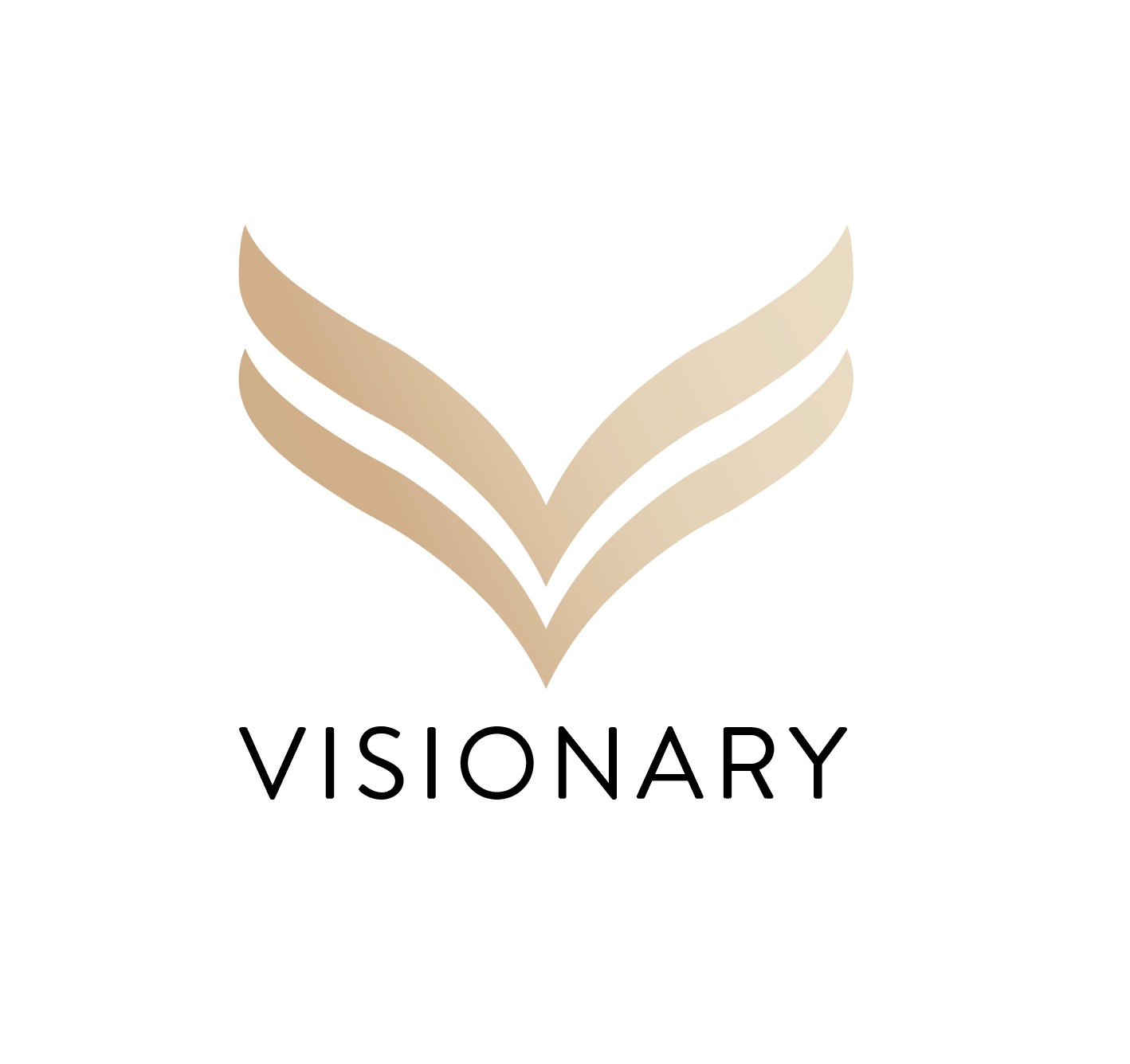 Visionary Interior Design Pte Ltd
