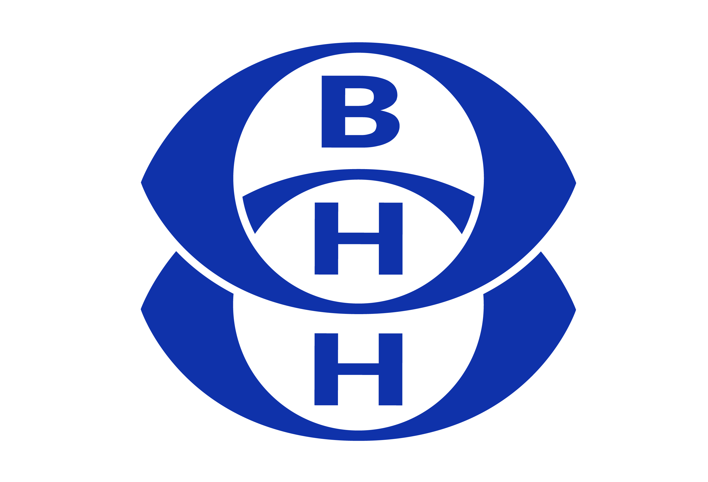 BAN HOCK HIN CO PTE LTD